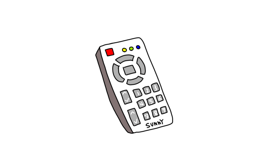 remote controlor rimokon